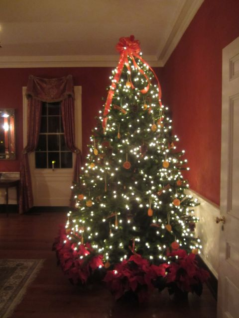 when we were planning our christmas decorations we knew we wanted to keep it simple and natural so when it came to our christmas tree we wanted to limit - Natural Christmas Tree